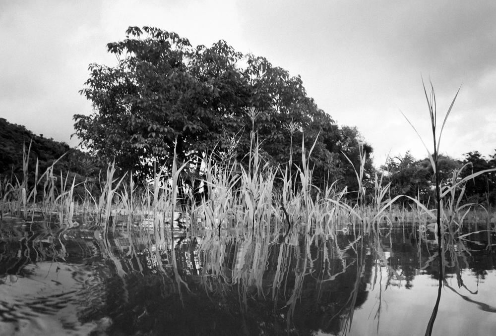 William  Bossen - Boca Do Valeria, Amazonia, Brazil