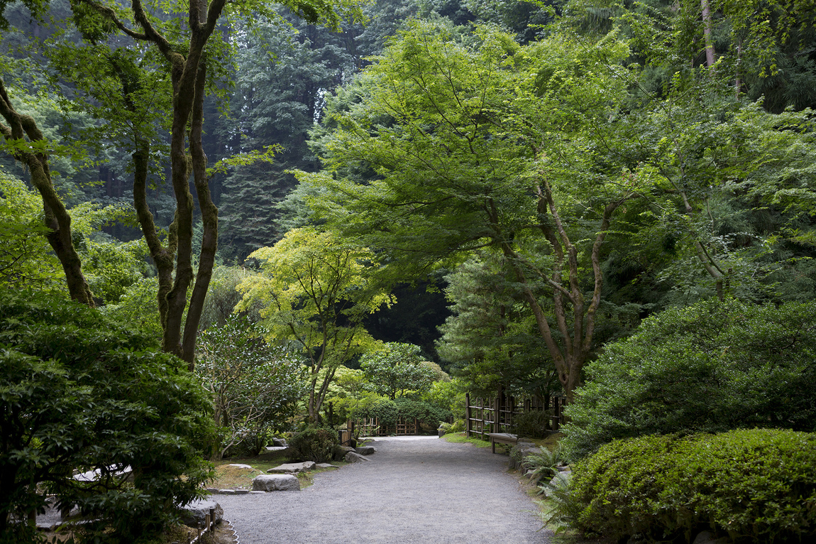 Christina Sjögren - The Portland Japanese Garden for The Japan Times